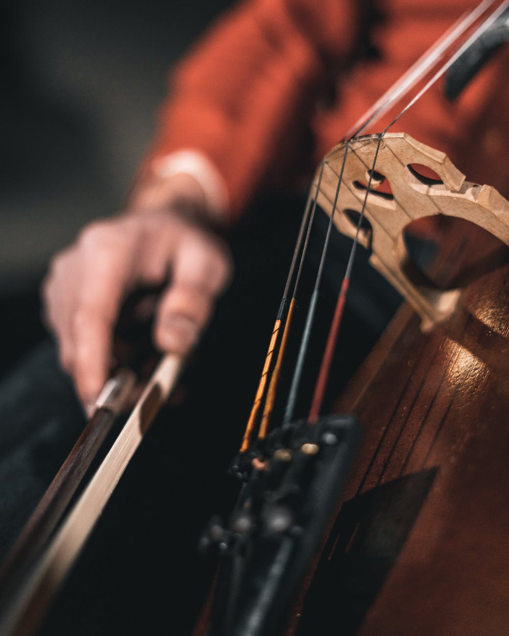 person playing stringed instrument